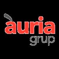 auria-grup
